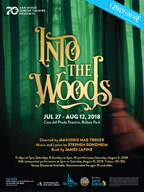2018-into-the-woods-poster
